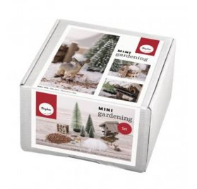 Set Mini Jardin 'Rayher' Winterdream